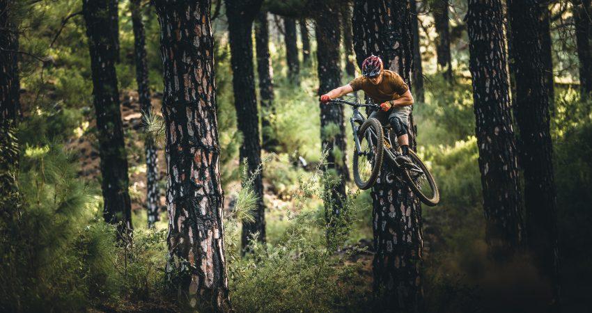 Jetzt Neu! Bikepark Kurs in Osternohe